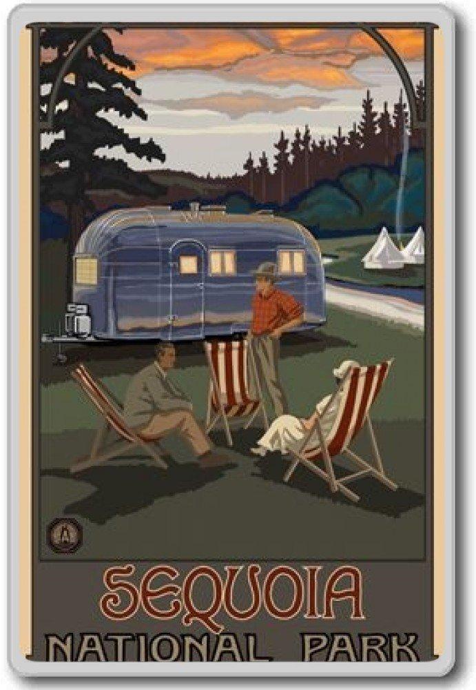 USA vintage travel fridge magnet Sequoia National Park Calamita da frigo