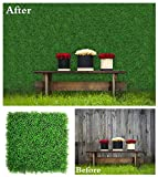 ULAND Artificial Boxwood Panels Hedges & Screens for Terraces, Balconies, Roof Decks, Pool Surrounds and Patios, Background Walls for Weddings or Party, 6 Pieces 20' x 20' Dark Green