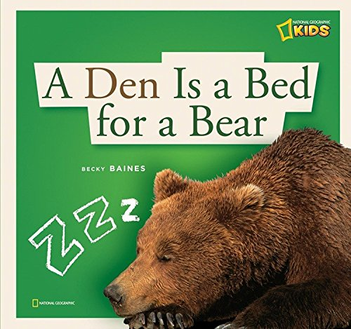 (ZigZag: A Den Is a Bed for a Bear)