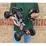 BSD Racing BAJA Prime Radio Control Car V2 1/10th Buggy Ready To Run Electric