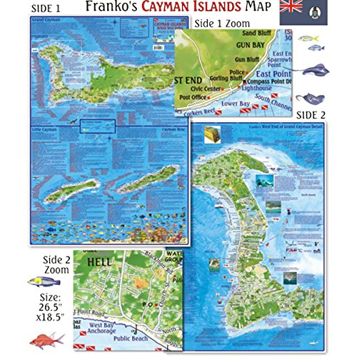 Franko Maps Cayman Islands Dive Creature Guide 18 X 26 Inch
