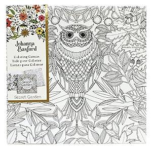 Amazon.com: Johanna Basford Secret Garden Coloring Canvas - Owl ...