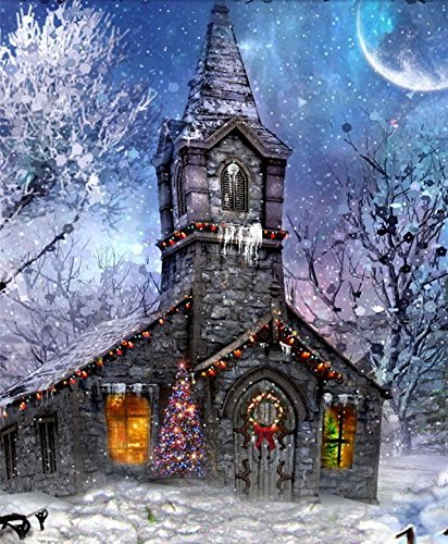 WOWDECOR Paint by Numbers Kits for Adults Kids, Number Painting - House Christmas Moon Night Snow Scene 16x20 inch (Frameless) ()