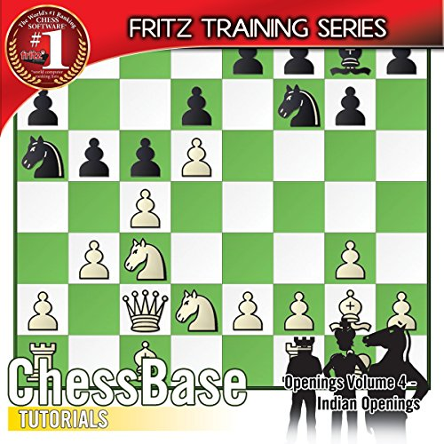 fritz 13 for fun how to learn