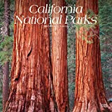 California National Parks 2020 12 x 12 Inch Monthly Square Wall Calendar, USA United States of America Pacific West State Nature (Multilingual Edition)