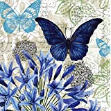 Cypress Home Blue Floral Study Embossed Paper Cocktail Napkin, 20 count by Cypress