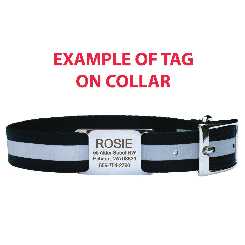 GoTags Pet ID Slide-On Personalized Dog & Cat Tags. Silent, No Noise Collar Tags made of Stainless Steel. Custom Engraved. Includes up to 4 Lines of Personalized Text. by GoTags Pet ID (Image #3)