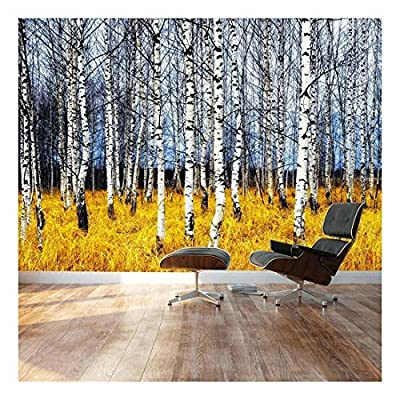 Beautiful Aspen Trees Fall Colors - Landscape - Wall Mural, Removable Sticker, Home Decor - 100x144 inches