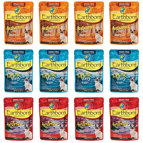 Earthborn Holistic Grain Free Wet Cat Food in Gravy Pouches