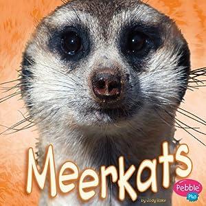 Meerkats Audiobook