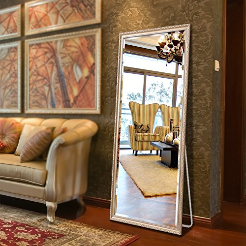 Alice 65'x22' Large Floor Mirror Full Length Cheval Floor Mirror with Adjustable Stand for Bedroom (Champagne)