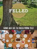 Felled: Giving new life to fallen urban trees.
