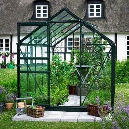 Popular 66 Invernadero de cristal de 3, 8 m²: Amazon.es: Jardín