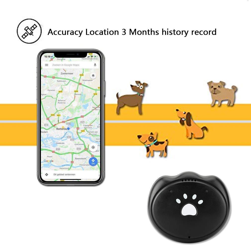 Amazon.com: SZFY-TAIOW - Rastreador GPS para mascotas ...