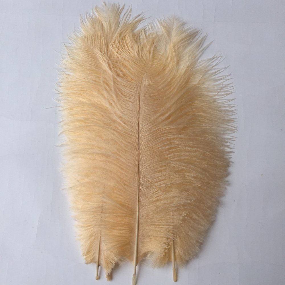 MELADY Pack of 1000pcs Natural Ostrich Feathers Centerpieces 8-10inch(20-25cm) for Home Wedding Party Decoration (Champagne)