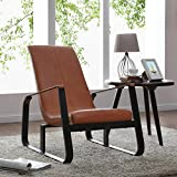 New Pacific Direct 6900011 Aeron Belt Accent Chair Furniture, Earthern Pottery