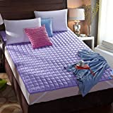 Collapsible Dampproof 3d Mattress.Breathable Washable Carpet Mattress Tatami mats-lavender 120x200cm(47x79inch)