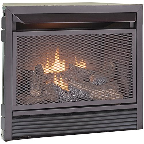 Duluth Forge Dual Fuel Vent Free Fireplace Insert - 26,000 BTU, Remote - Propane Vent Direct Fireplace Gas