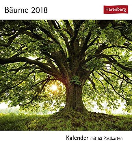 Bäume - Kalender 2018: Kalender mit 53 Postkarten