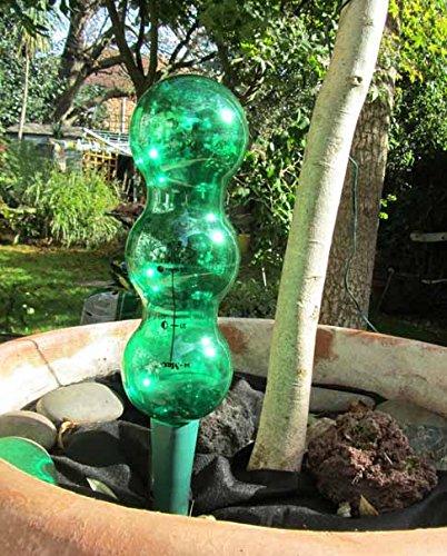Nutley s - corto Aqua equilibrio pico de riego botella parte superior: Amazon.es: Jardín