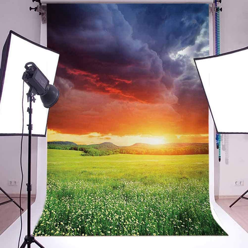 Mystical Horizon with Dark Storm Cloud Meadow with Sunset View Image Modern Design Background for Kid Baby Artistic Portrait Photo Shoot Studio Props Video Drape 8x10 FT Photography Backdrop
