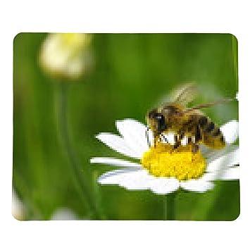 alfombrilla de ratón Abeja en la flor - rectangular - 23cm x 19 cm