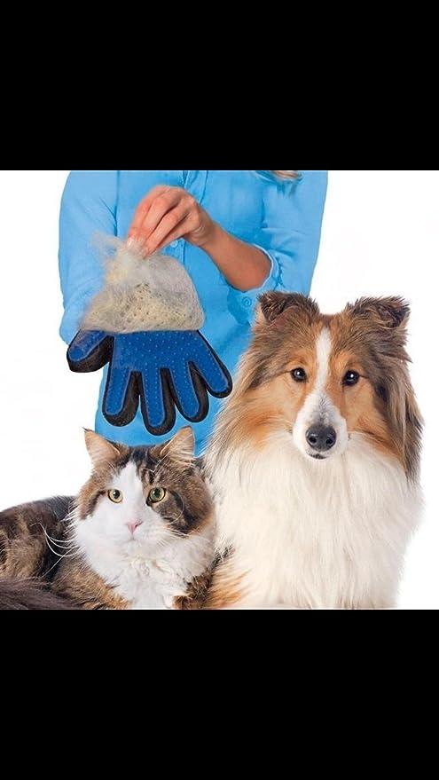 Guante de aseo para perros y gatos, verdadera limpieza al remover el pelo, guante removedor de pelo para baño por modelo.: Amazon.es: Productos para mascotas