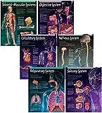 Creative Teaching Press Human Body, 6-Chart Pack (5715)