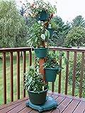 My Garden Post 5 Planter Vertical Gardening System Finish, Hunter Green