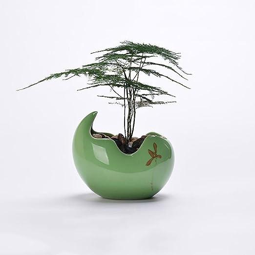 JKL-Soportes para Plantas Minimalista Macetas de Plantas y Verdes ...