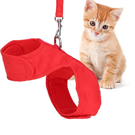 Arnés para Gatos a Prueba de Escape con Correa Conjunto de arnés y ...