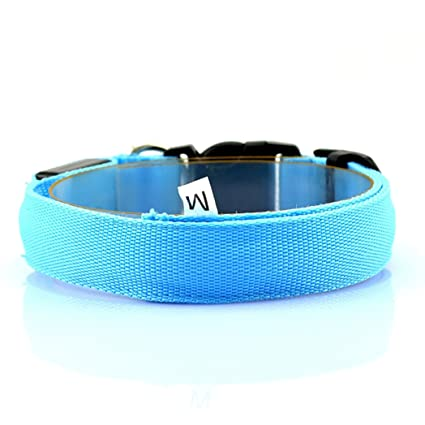 Buy Cozy Courier Led Dog Collar- Great Collar for Your Dog
