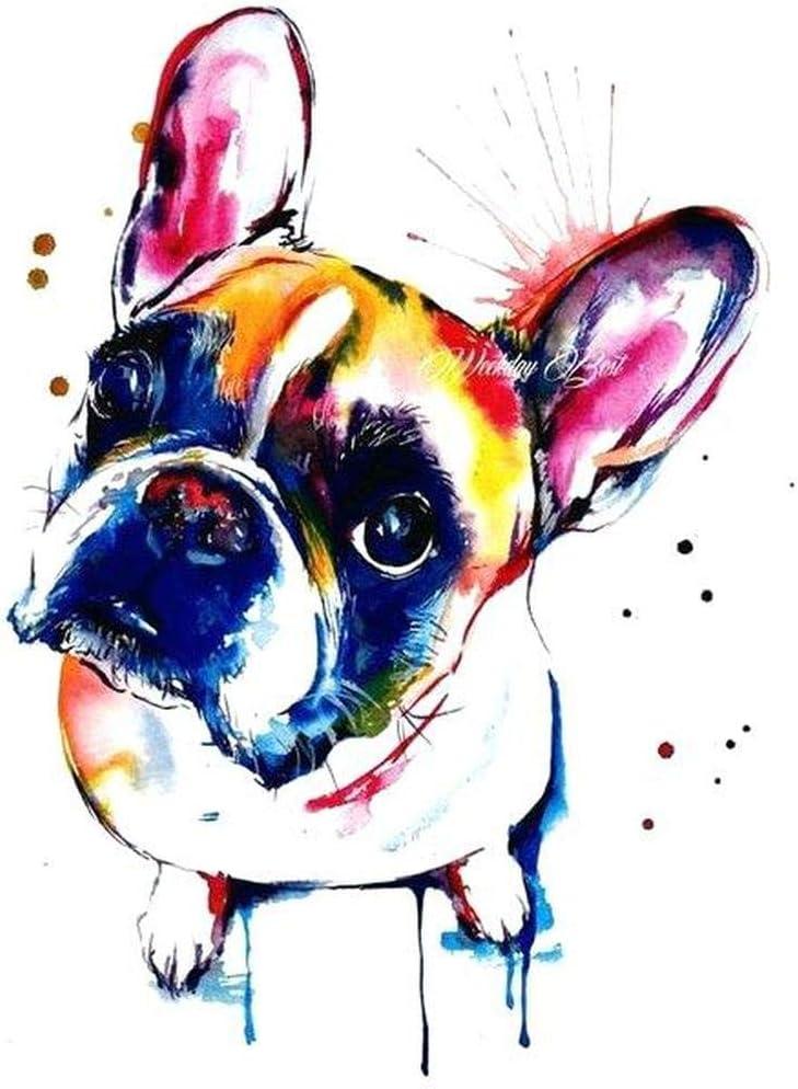 24x24cm 5D Colorful Dog Diamond Painting Embroidery La plaza taladro de diamante bordado lindo bulldog frances 5D DIY diamante pintura Cruz de diamantes de imitación mosaico