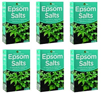 6 x Cajas de Vitax Ltd - El magnesio Sulfato Salts - - 1.25 kg cada uno: Amazon.es: Jardín