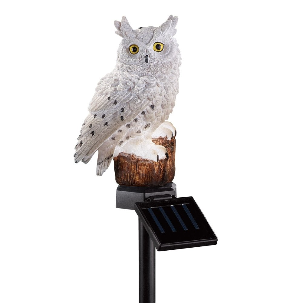Amazon.com : Solar Owl Garden Decor Yard Stake, White : Patio, Lawn U0026 Garden