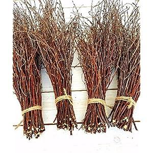150 Birch twigs - 3 bundles. white birch branches, Centerpieces.Thin birch branches.birch branches for decoration, Decorative branches (3x50pcs bundles) 2