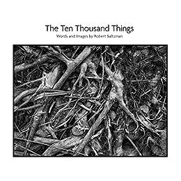 The Ten Thousand Things by [Saltzman, Robert]