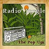 Radio Jungle