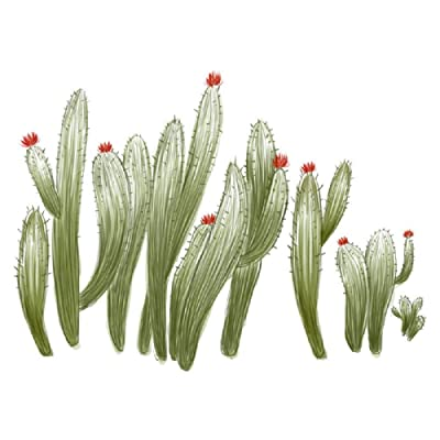 Amaonm Creative Removable 3D Green Plant Wall Stickers Murals DIY PVC Cactus Flowers Wall Decals Peel Stick Art Decor Wallpaper for Home Wall Living Room Bathroom Kids Girls Babys Bedroom Nursery: Baby
