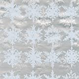 Entertaining with Caspari 94322RC Snowfall Foil Continuous Gift Wrap Roll, 8', Silver