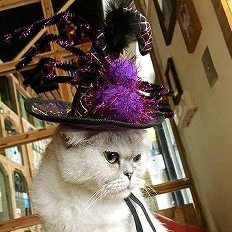 Takefuns - Gorro de Halloween para Mascotas, Perros, Gatos ...