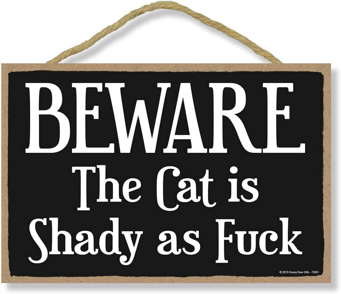 Honey Dew Gifts Funny Inappropriate Signs, Beware The Cat is Shady 7 inch by 10.5 inch Hanging Wall Art, Decorative Wood Sign, Cat Decor