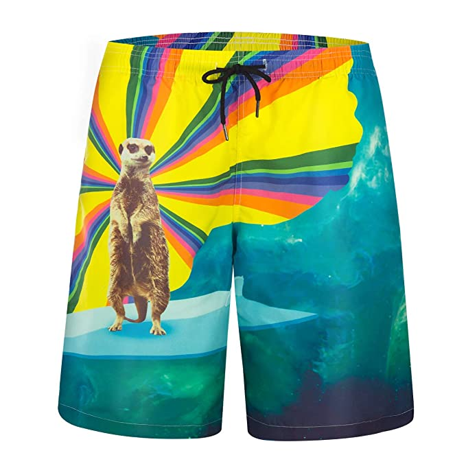 6090f2d31d Image Unavailable. Image not available for. Color: Zeetoo Mens Printed  Funny Swim Trunks Quick Dry Beachwear Sports Running Swim Board Shorts Mesh  Lining