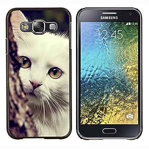 GIFT CHOICE / Teléfono Estuche protector Duro Cáscara Funda Cubierta Caso / Hard Case for Samsung Galaxy E5 E500 // Turkish Angora White Shorthair Cat //