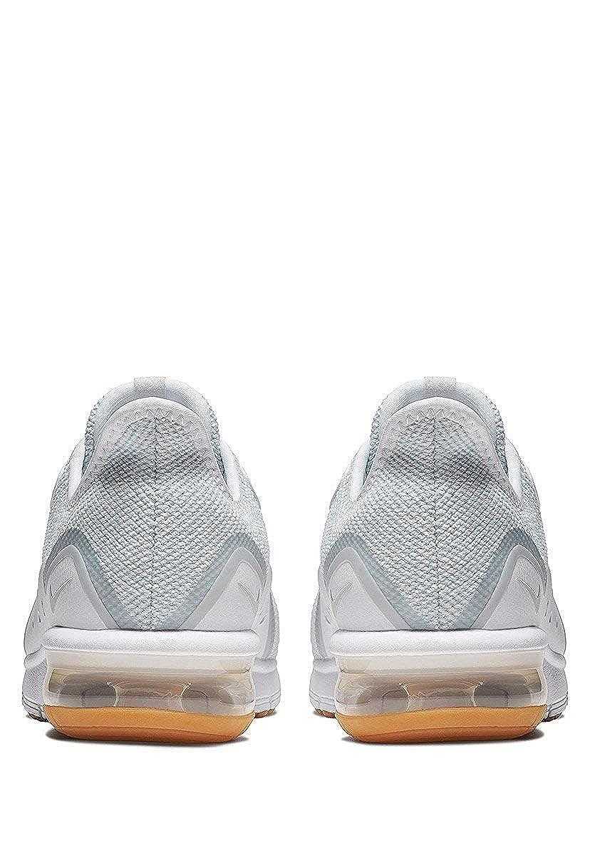 online store 8c73a af78a Amazon.com  Nike Mens SB Zoom Blazer Low Skate Shoe  Road Ru