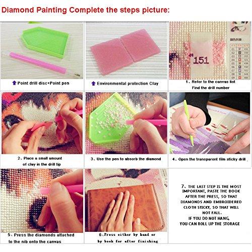 8088 5D Diamant Peinture kit DIY Cristaux Diamant De Strass Peinture Collez-le Peinture par num/éro Kits point de croix