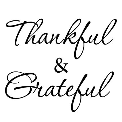 amazon com thankful and grateful wall decal 2 inspirational