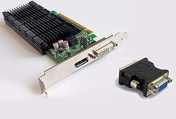 NVIDIA Tarjeta gráfica GeForce 605 DP s26361-d2422-v605 PCIe ...