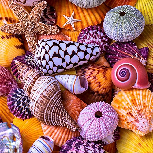 Wooden Jigsaw Puzzles for Adults - Ocean Treasures - 145 Pieces by Nautilus Puzzles. Made in USA.