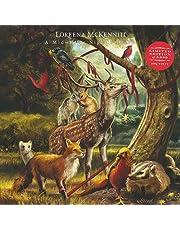 A MID WINTER'S NIGHT DREAM (LP)
